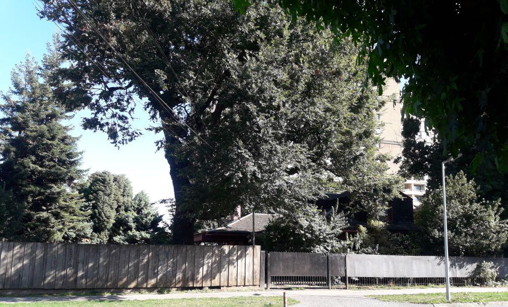 Casa de Hochstetter 220, utilizada por inteligencia de Carabineros