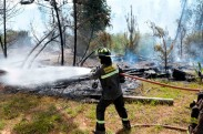 Incendios-forestales-820x500