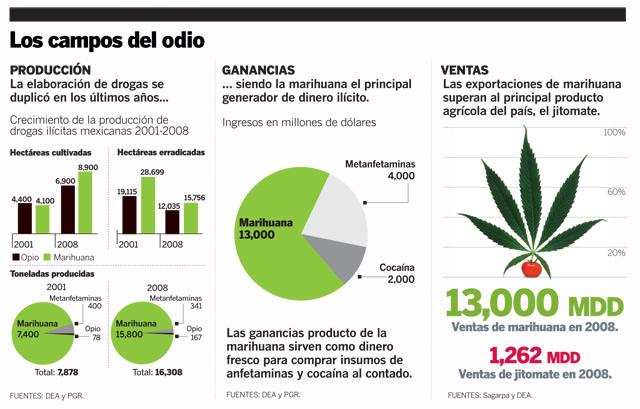graficos sobre la drogadiccion: