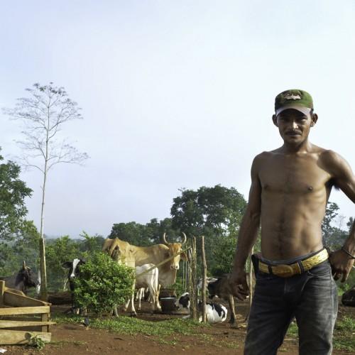 Un habitante de la comunidad conocida como Polo de Desarrollo, en Punta Gorda, Caribe sur de Nicaragua. Carlos Herrera/Confidencial.