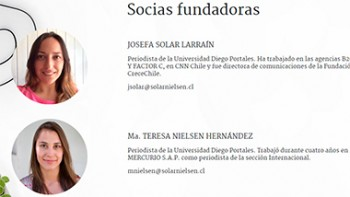 Página web de Solar&Nielsen