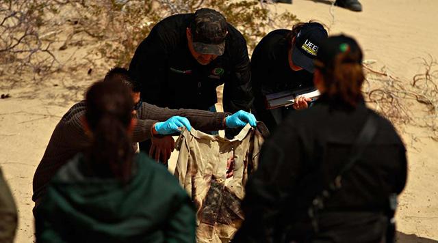 Luis Torres | Archivo | El Diario | Hallazgo realizado durante un rastreo en 2012