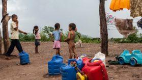 Estado mexicano, el gran omiso del desplazamiento forzado