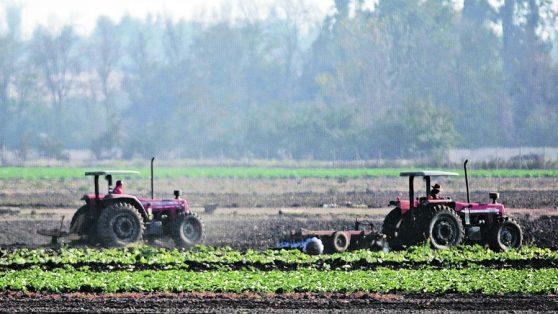 Manifiesto por la agricultura familiar: primera línea de la alimentación