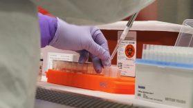 Analiza hasta 1.400 test diarios: principal laboratorio público se queda sin insumo para procesar exámenes Covid