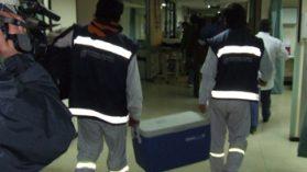 Trasplantes: Los órganos que el sistema pierde y los chilenos que se niegan a donar