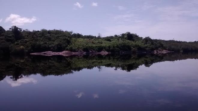 Rio Negro. Foto:  Natalia Viana
