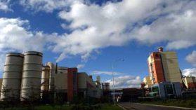 Plantas Valdivia y Nueva Aldea de Celco arriesgan clausura por graves faltas ambientales