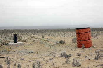 Parte del terreno de Natalia Compagnon.