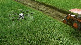 """Empresas extranjeras """"desovan"""" en Brasil pesticida prohibido en sus propios países"""