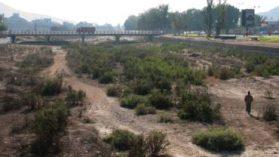 Se muere el río Copiapó (I): Consumo humano, agrícola y minero están en riesgo