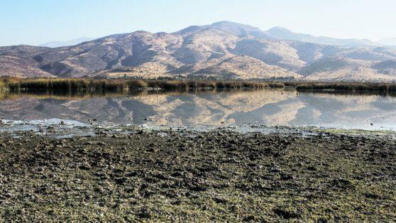 El agua como bien público: análisis de lo que el Senado rechazó esta semana
