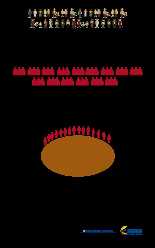 infografia-cafe-ajustada