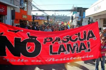 Protesta contra proyecto Pascua Lama (Fuente: veoverde.com)