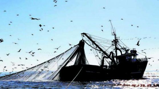 La Ley de Pesca hace aguas
