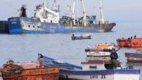 Sin control, gigantes pesqueros diezman el Pacífico Sur