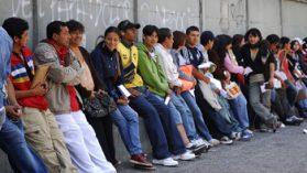 Las presiones de los empresarios agrícolas por abrir las fronteras a trabajadores extranjeros