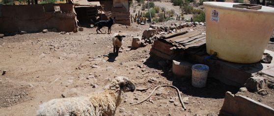 La naturaleza política de la sequía en Petorca